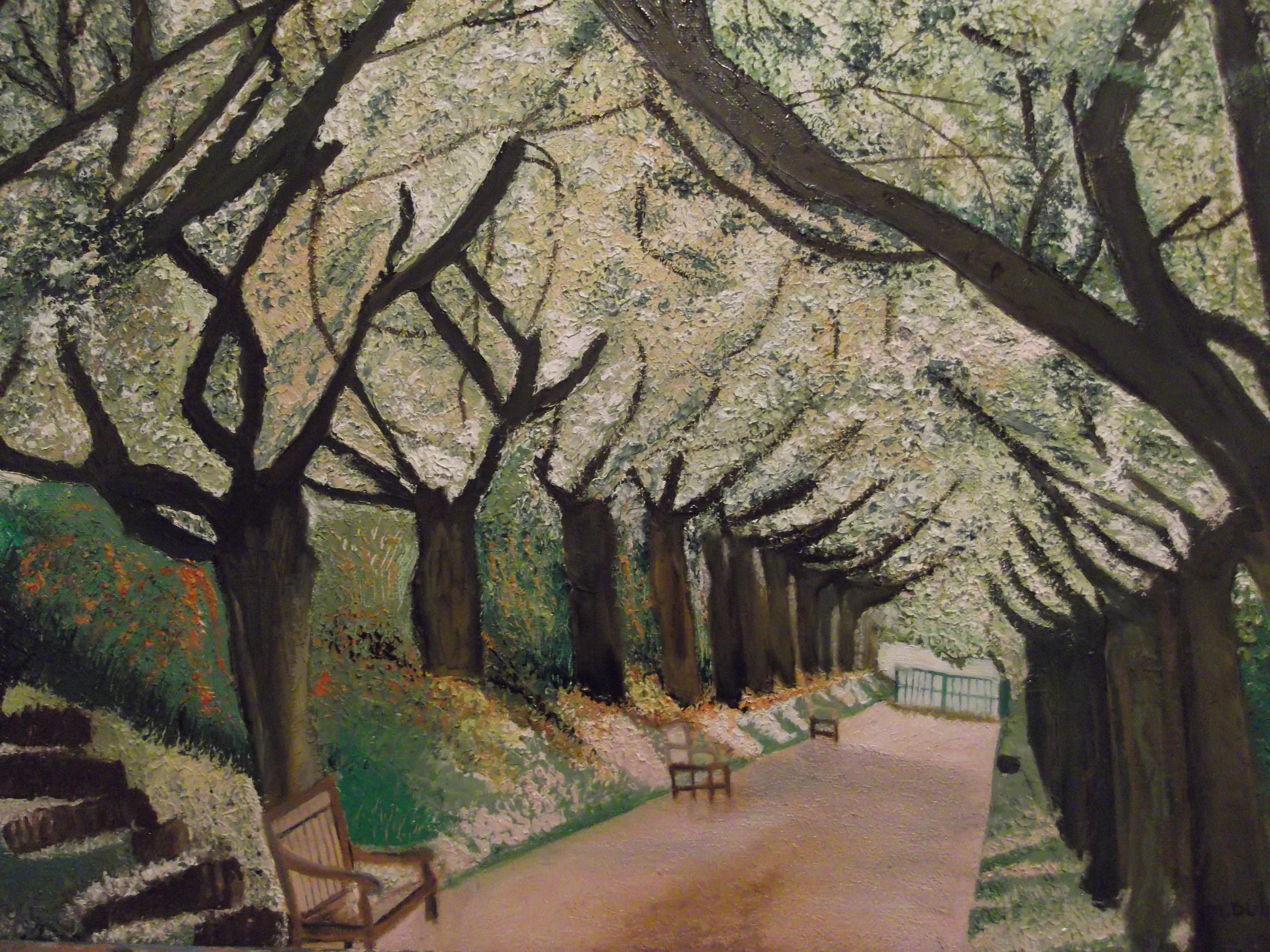 Allée au milieu d'un parc entourée d'arbres fleuris